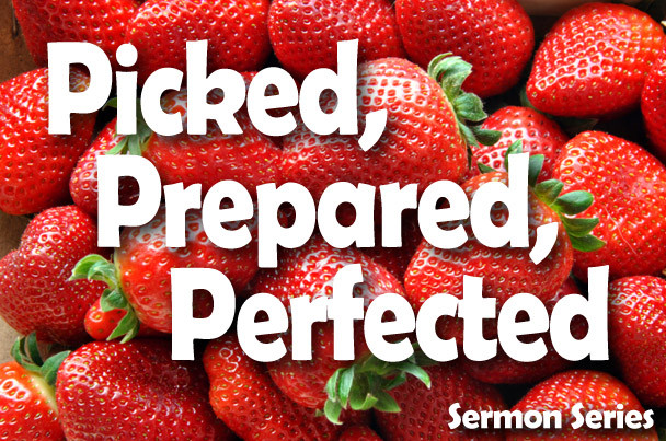 picked prepared perfected